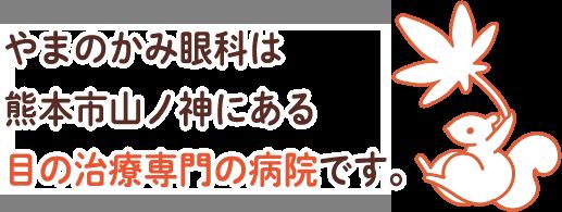 やまのかみ眼科は熊本市山ノ神にある目の治療専門の病院です。
